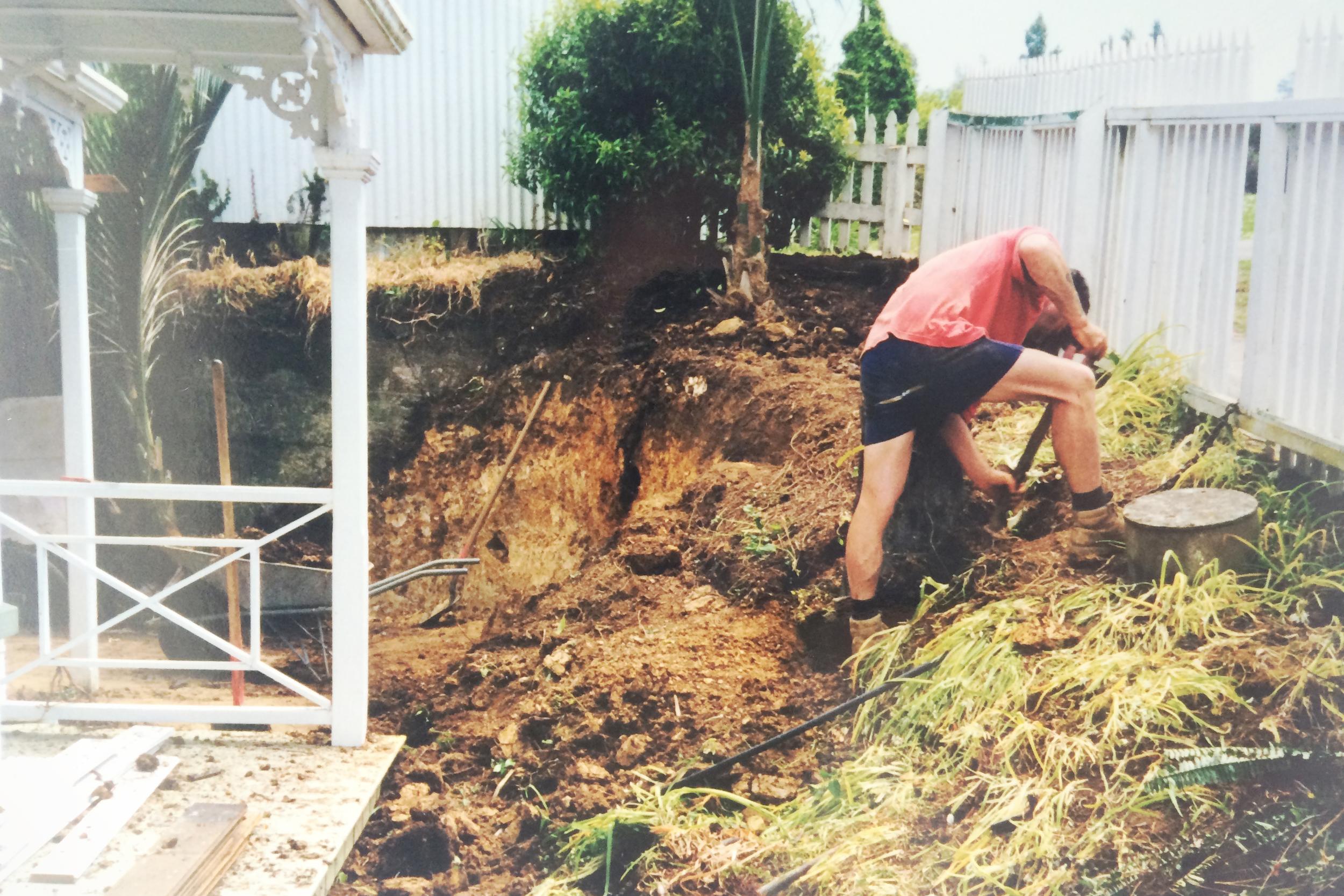 Removing overgrown shrubs