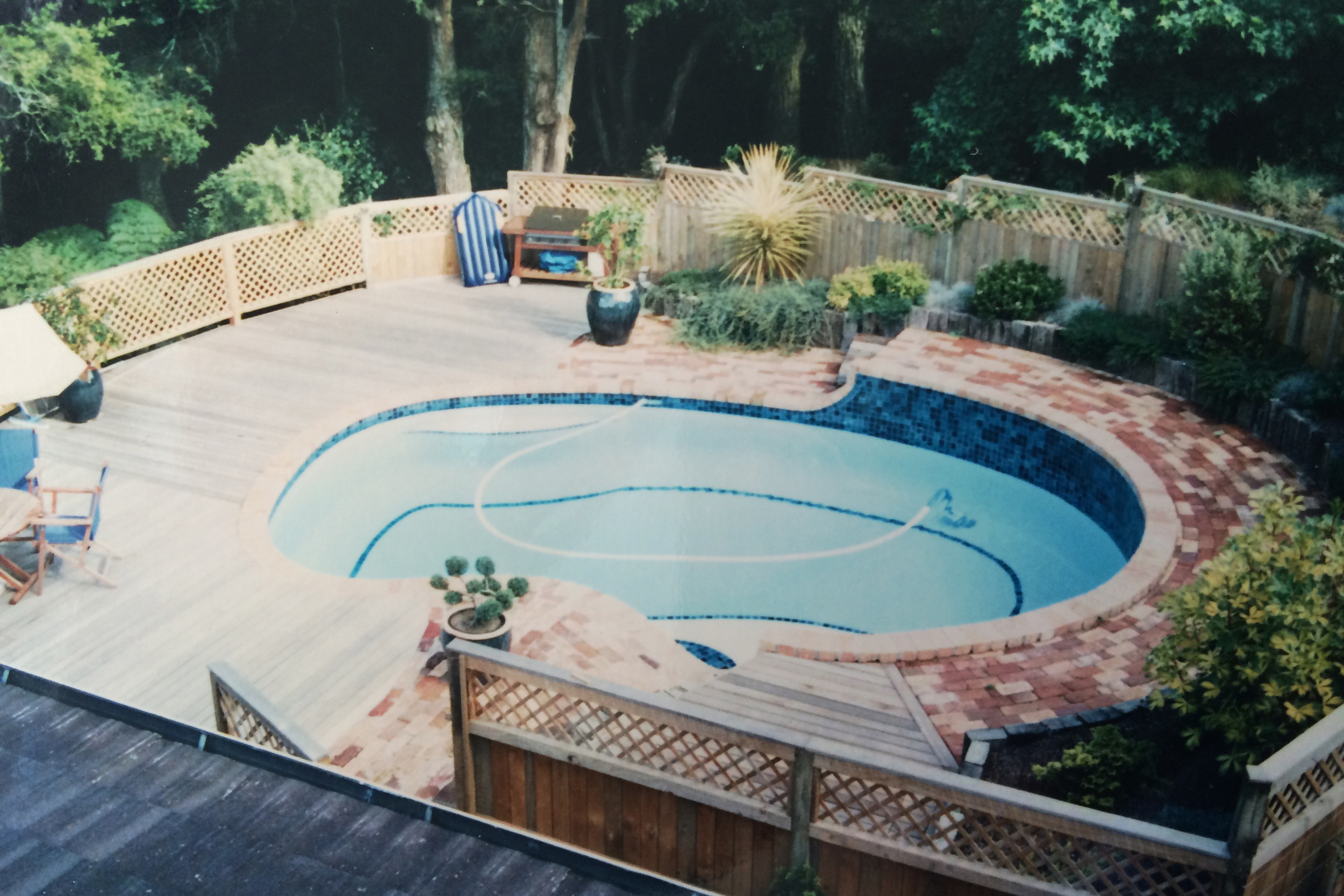 Pool, surrounding planting and fencing