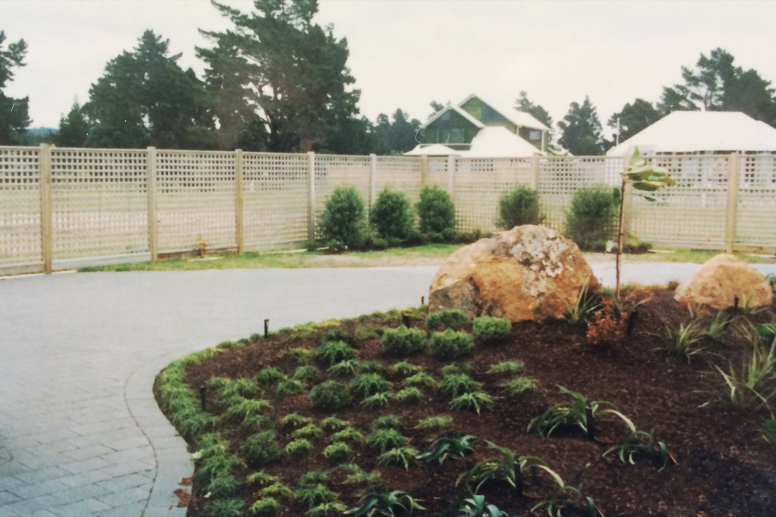 Soft native planting at the back of the property
