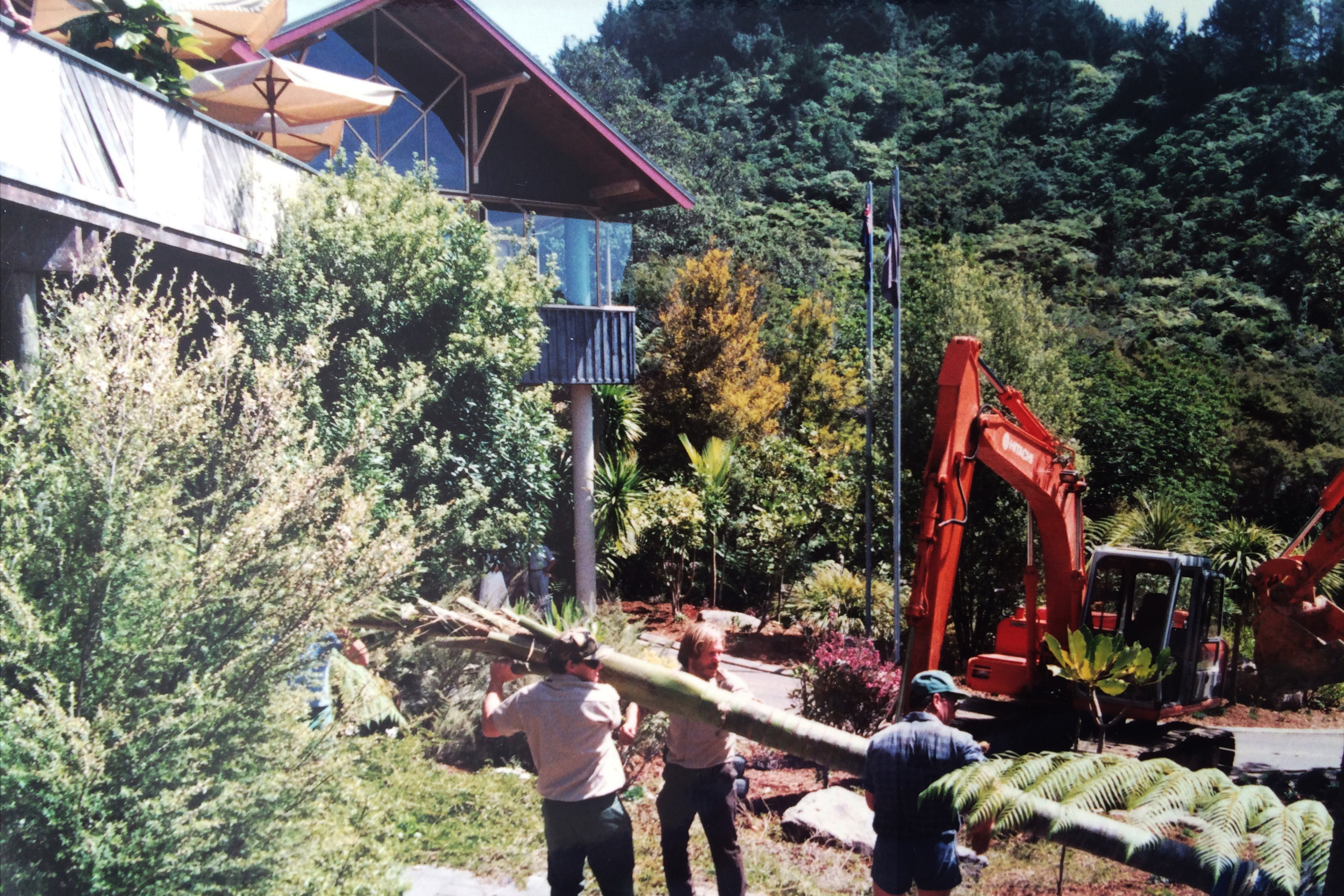 Preparing to placement of palms