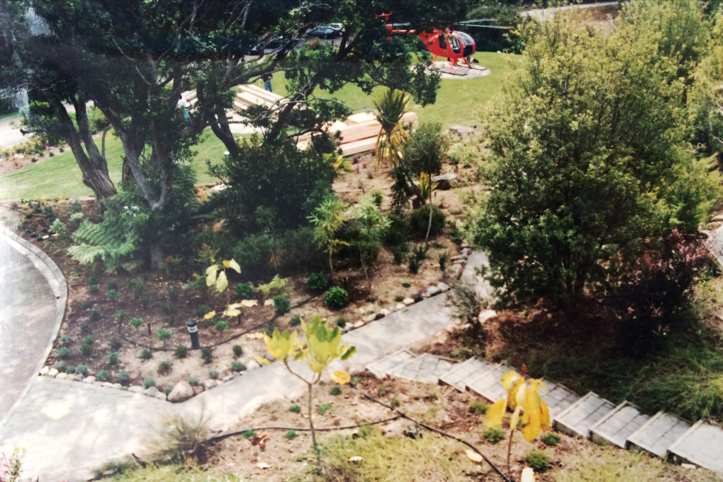 Soft native planting around helicopter pad