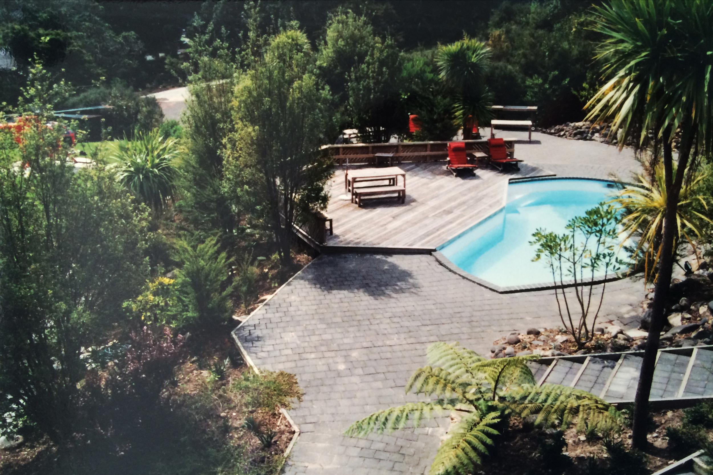 Native planting around pool area