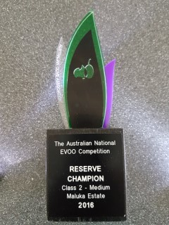 AOA reserve Champ Trophy (Mobile).jpg