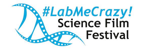 logo_labmecrazy.jpg