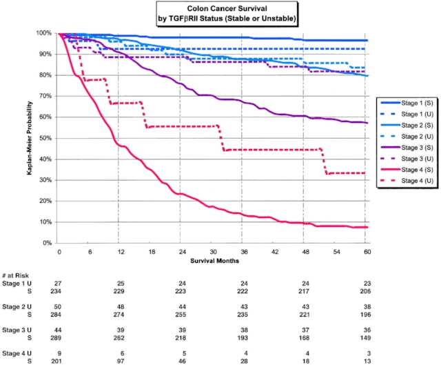 Colon Cancer Survival Rates After Recurrence Cancerwalls