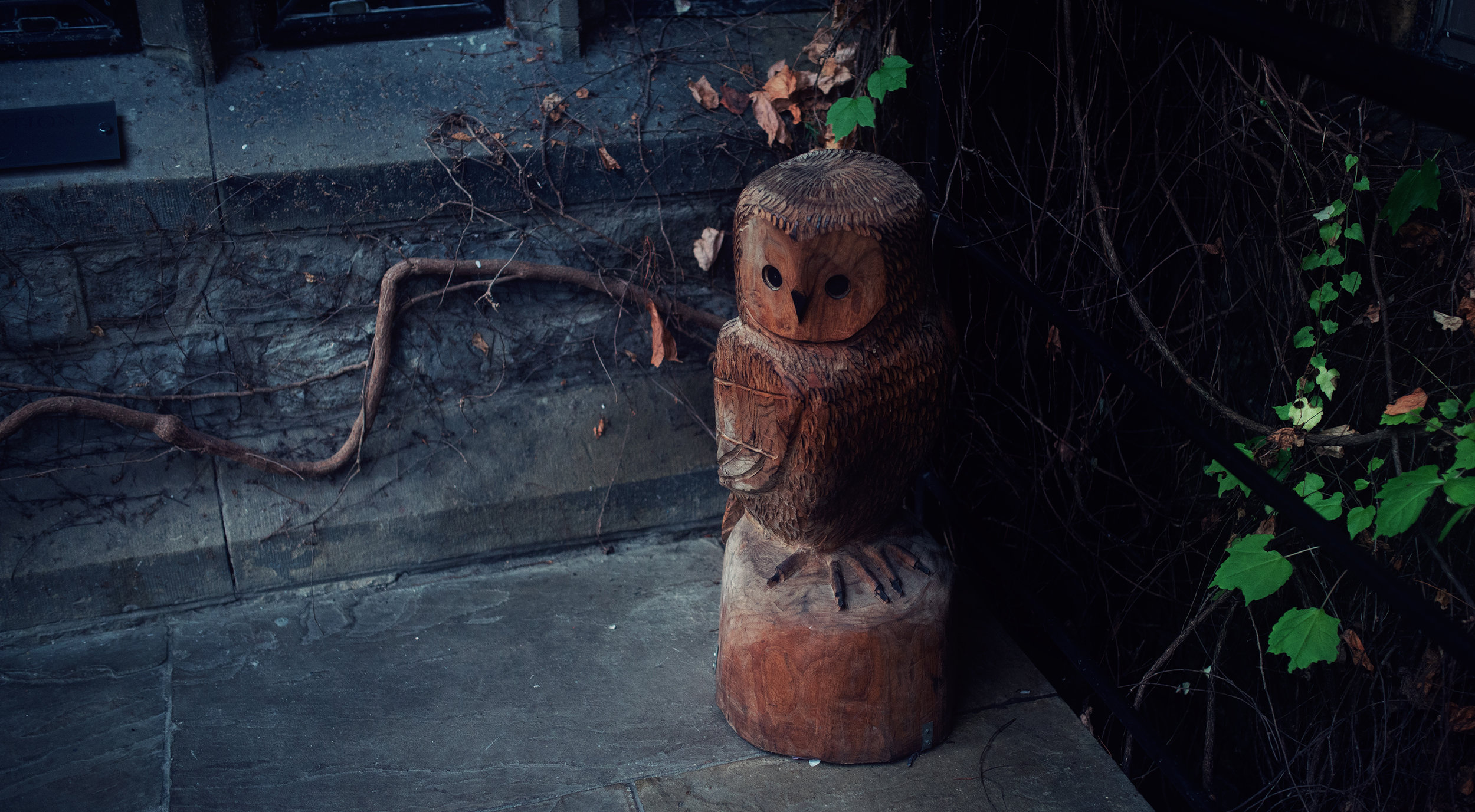 Wooden Owl carving at Stirk House