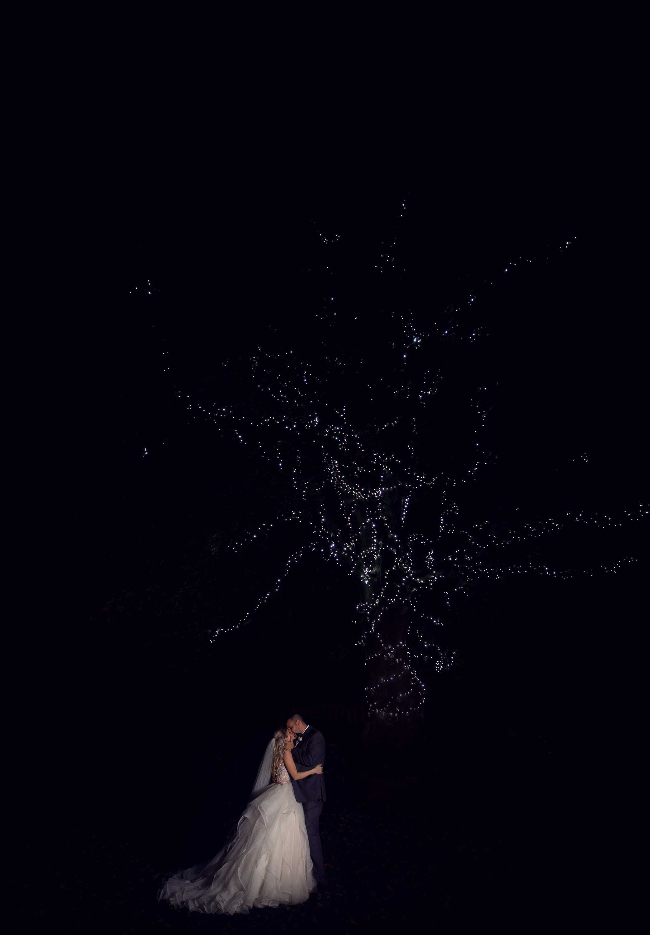 Night time shot of the Bride and Groom under the illuminated tree at Stirk House Hotel