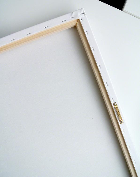 Baco of canvas.jpg