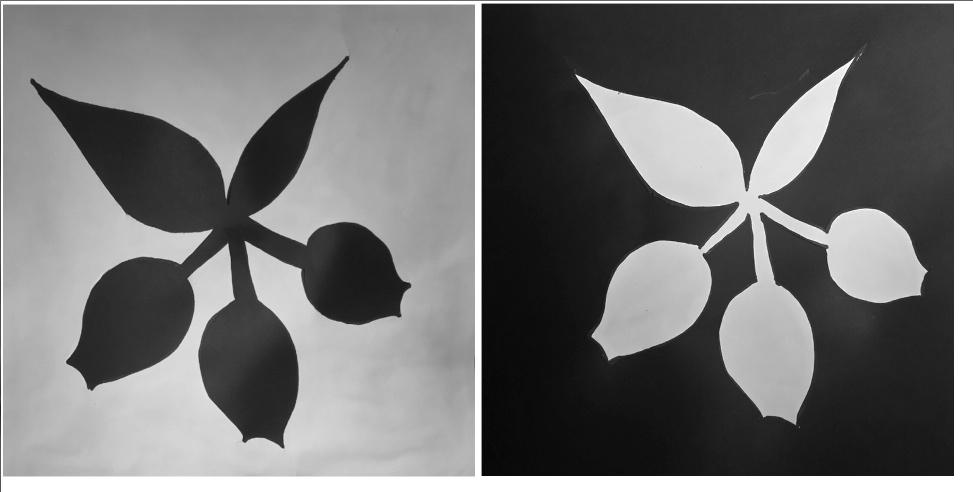 1. My symbol - White and Black.jpg