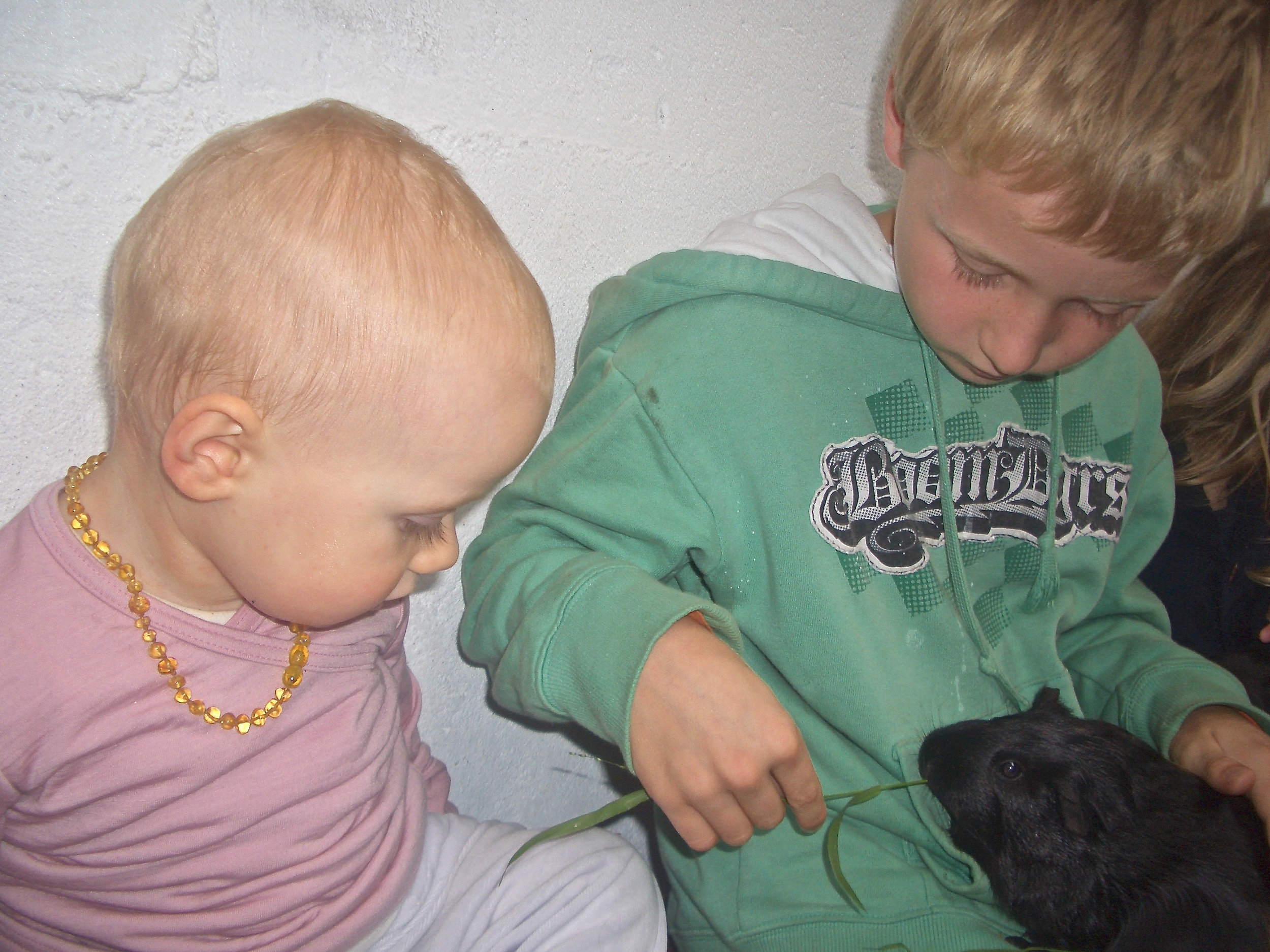 image to illustrate joint attention: children with guinea pig
