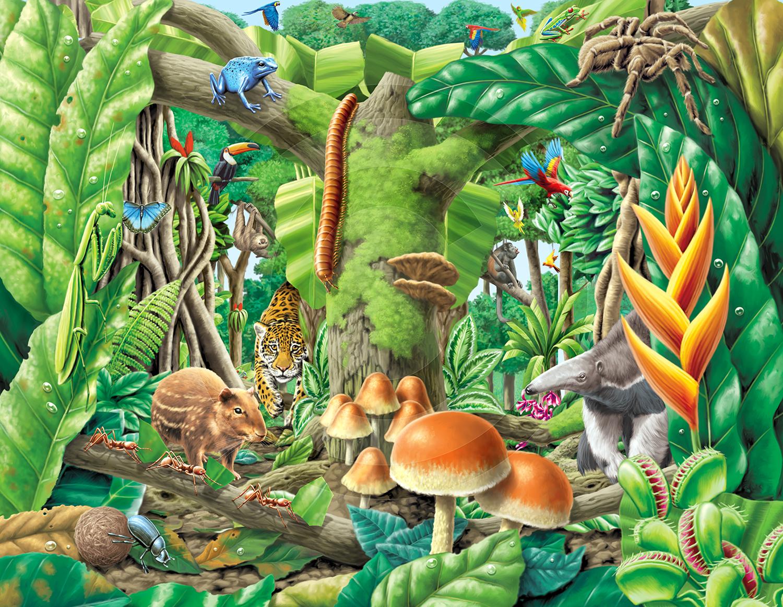 Tom Connell Illustration