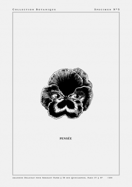 Pensee-A5-WEB.jpg