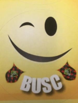FSF Smiley Face Image.jpg