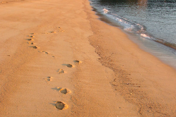 Foot prints in the sand on a Golden Bay beach