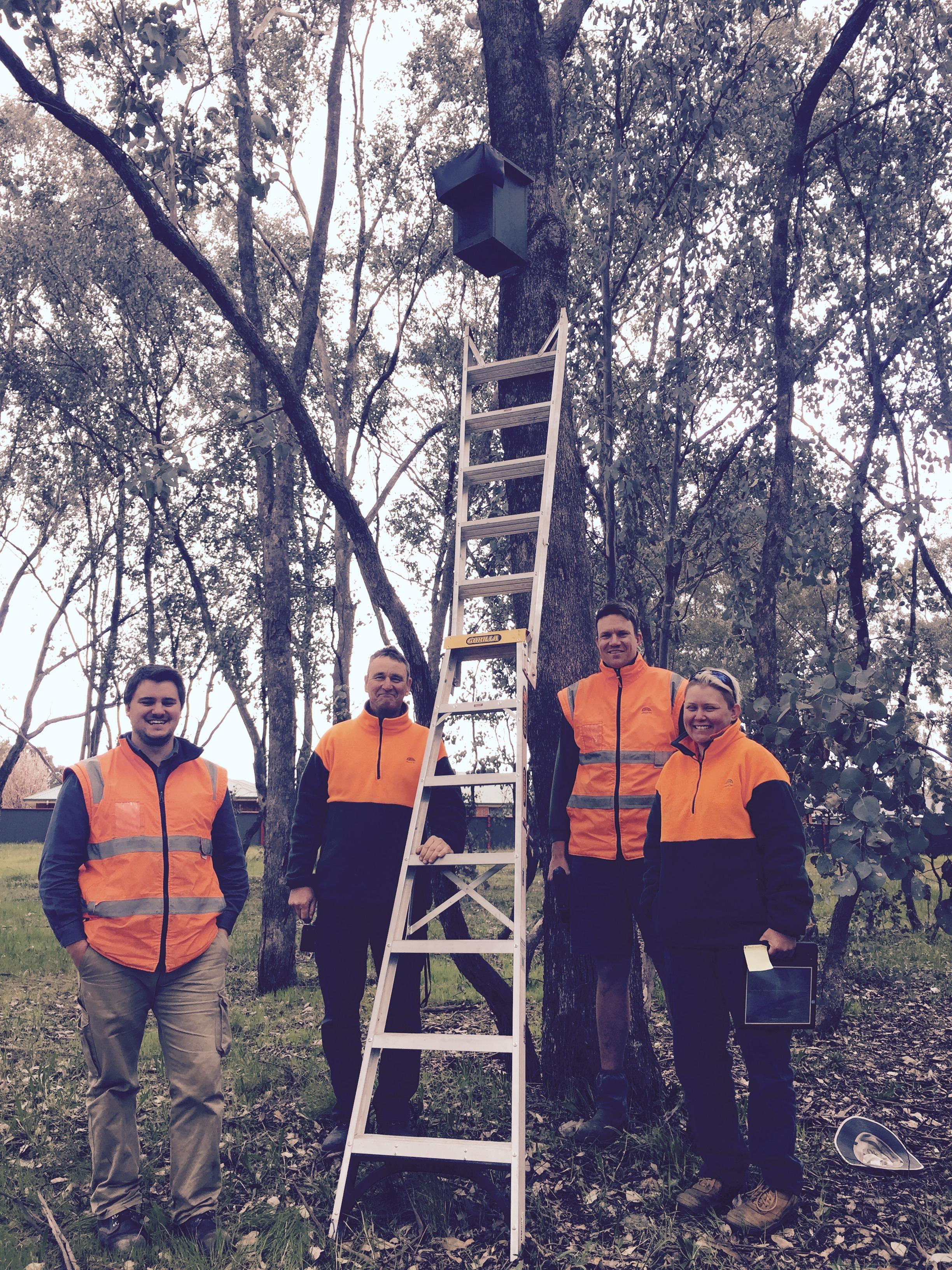 Council installing nest boxes_Edge Pledge_14Sept2017.jpg