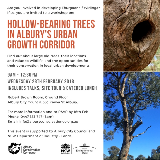Workshop Invitation_Hollow bearing trees_Albury_28th February 2018.jpg