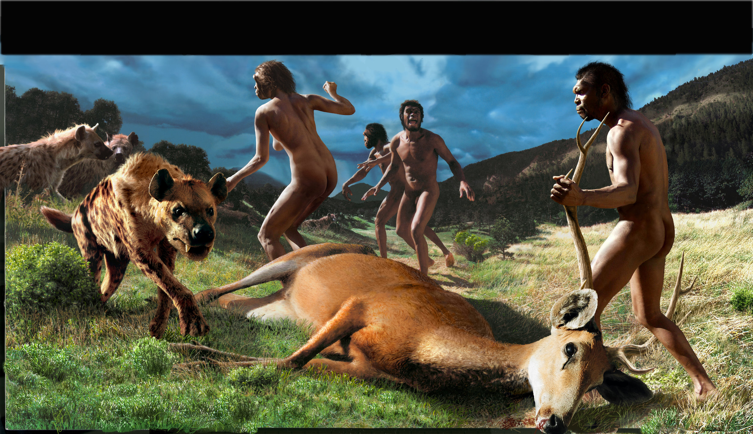 Homo erectus  at Dmanisi; competition among predators; first hominins outside of Africa.