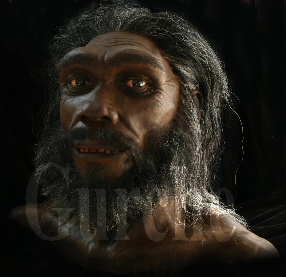 IMG_655 Homo heidelbergensis based on the Kabwe skull.jpg