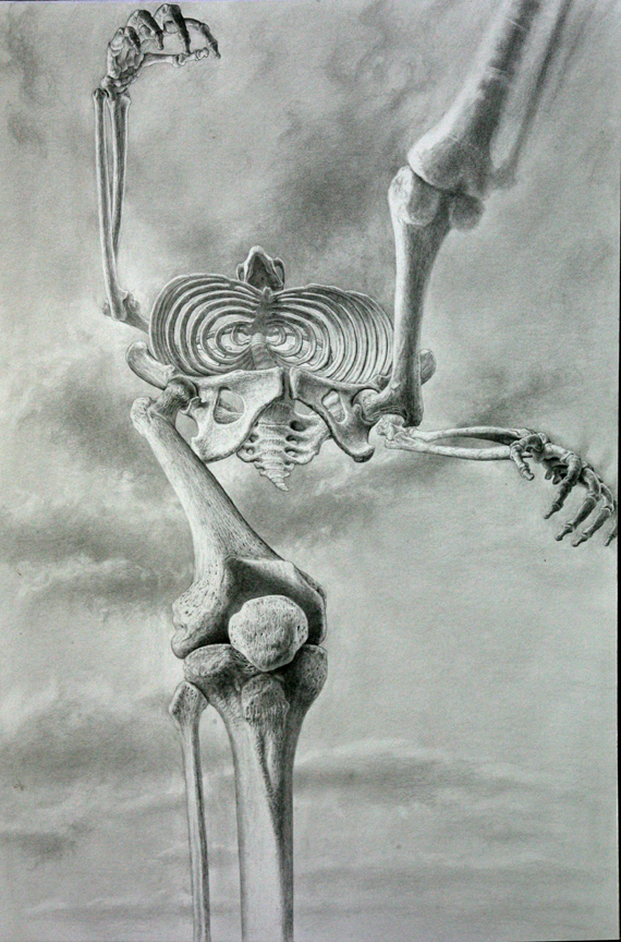 """Lucy,""  Australopithecus afarensis , adult female, Ethiopia"