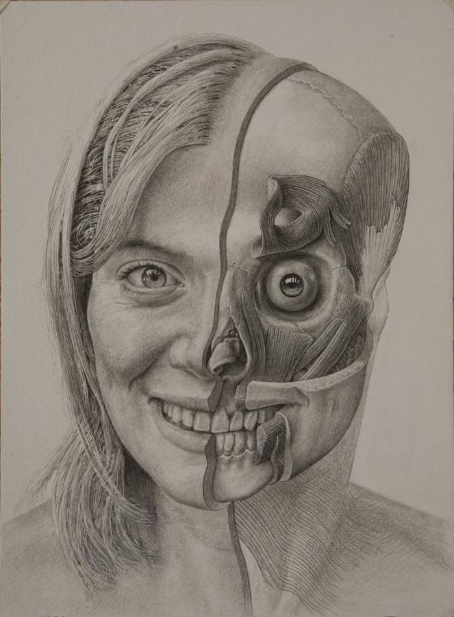 Homo sapiens , adult female