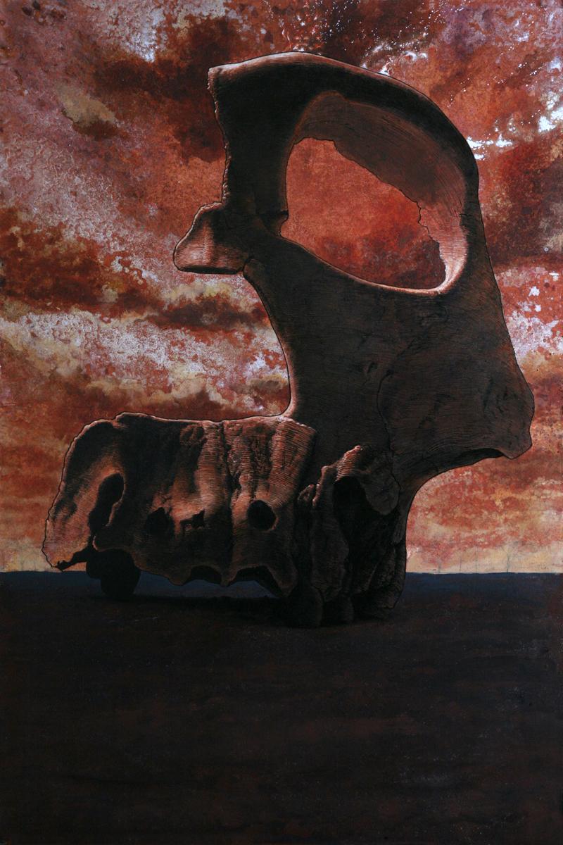 Homo erectus , South Africa