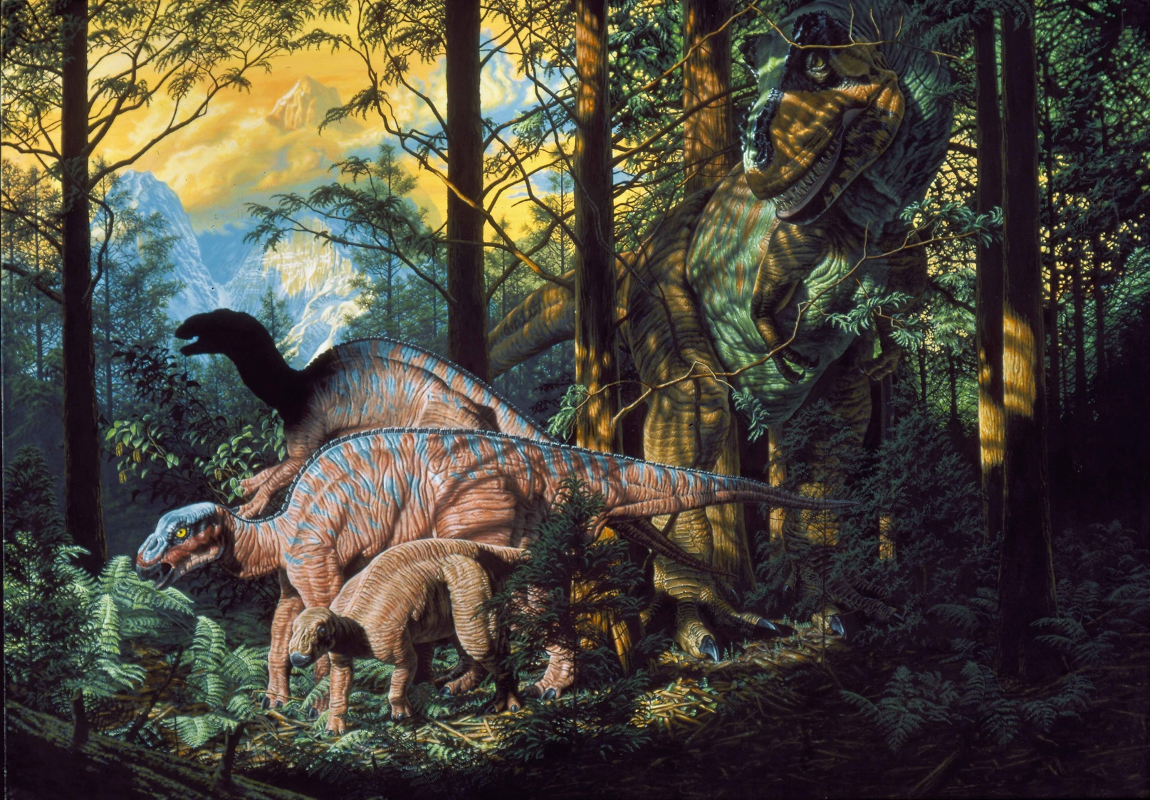 Edmontosaurs and tyrannosaur. This painting, also done for the January, 1993 issue of  National Geographic Magazine,  depicts hadrosaurs (duckbills) and a stealthy tyrannosaur found on Alaska's North Slope, which was even further north at this time in the late Cretaceous Period than it is today. These dinosaurs were either adapted to the cold and dark, or migrated long distances as their relatives, the birds, do today.  $80,000