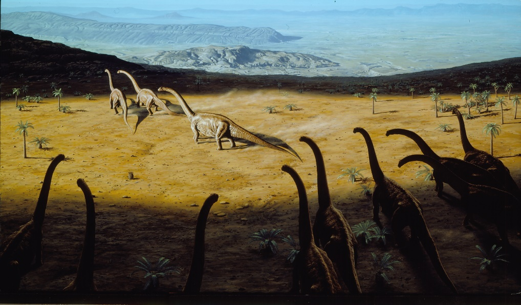 Diplodocus  herd.  The Rise of Life , by John Reader, Alfred Knopf, 1986.  $40,000 .