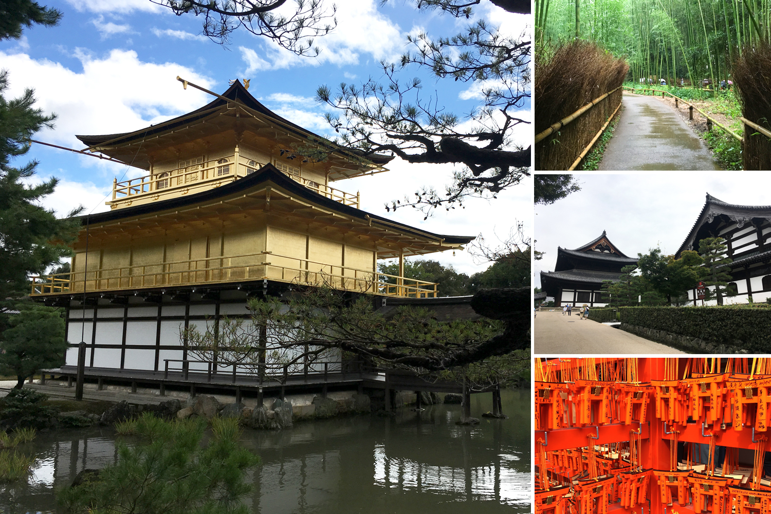 More than just a beautiful place, Kyoto is fast attracting creatives, social entrepreneurs and start-ups.