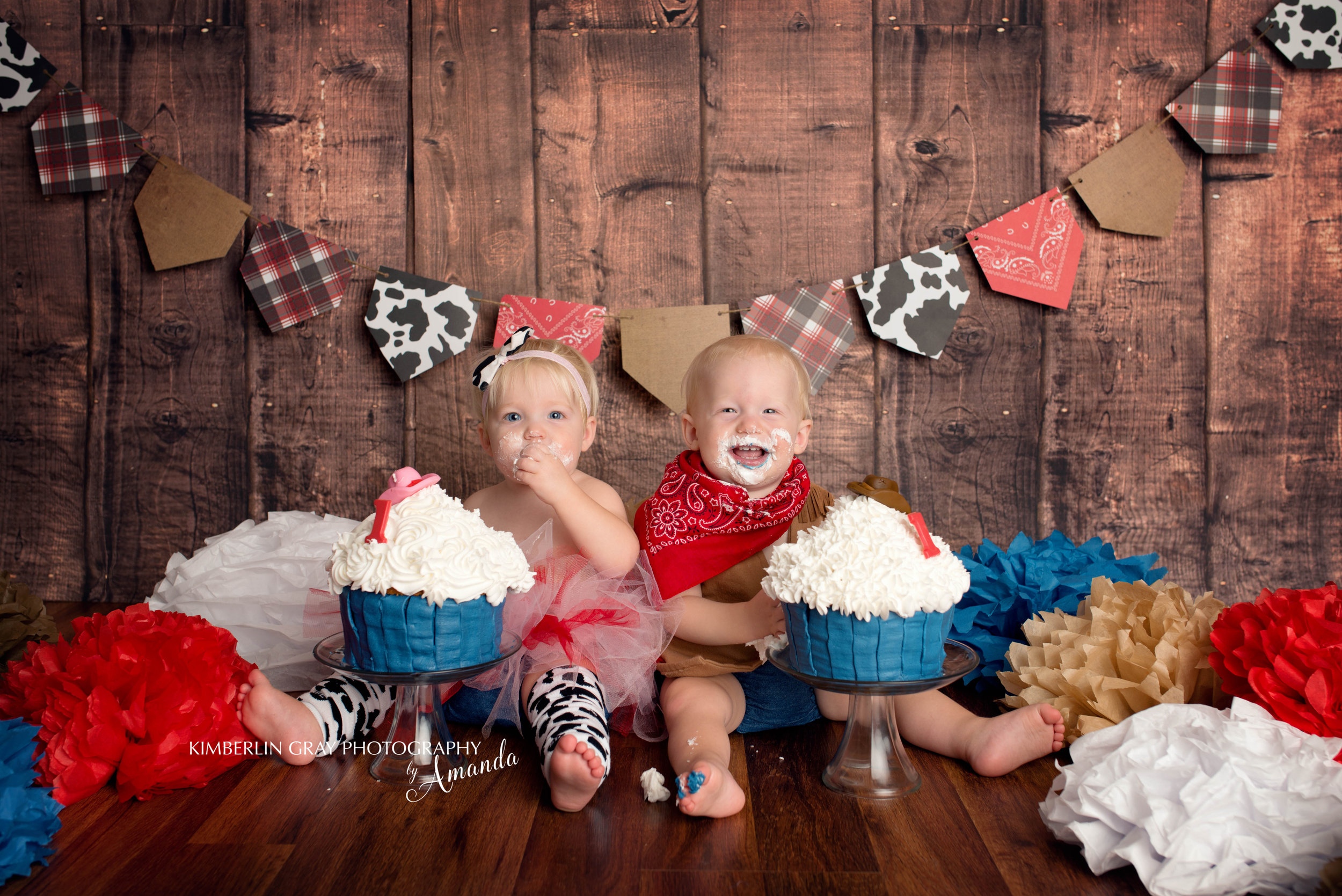 Twin First Birthday Cake Smash Photographer