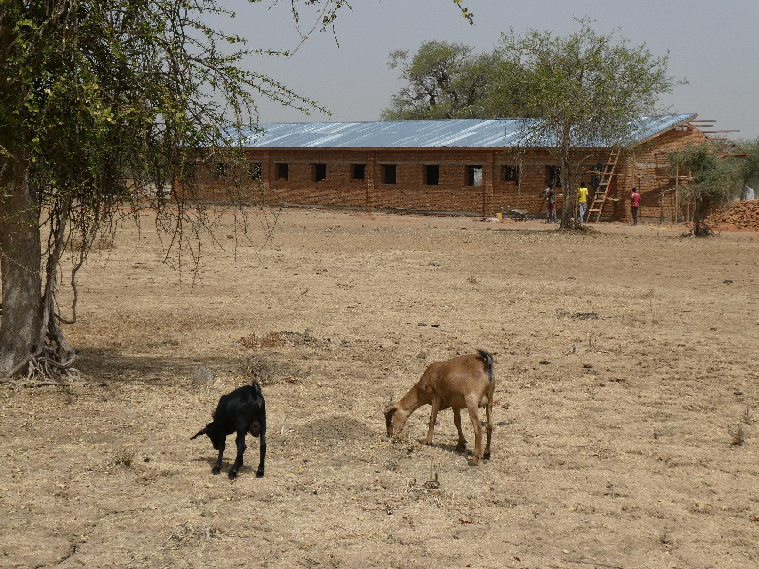 Future home of Bill Cook Secondary School in South Sudan