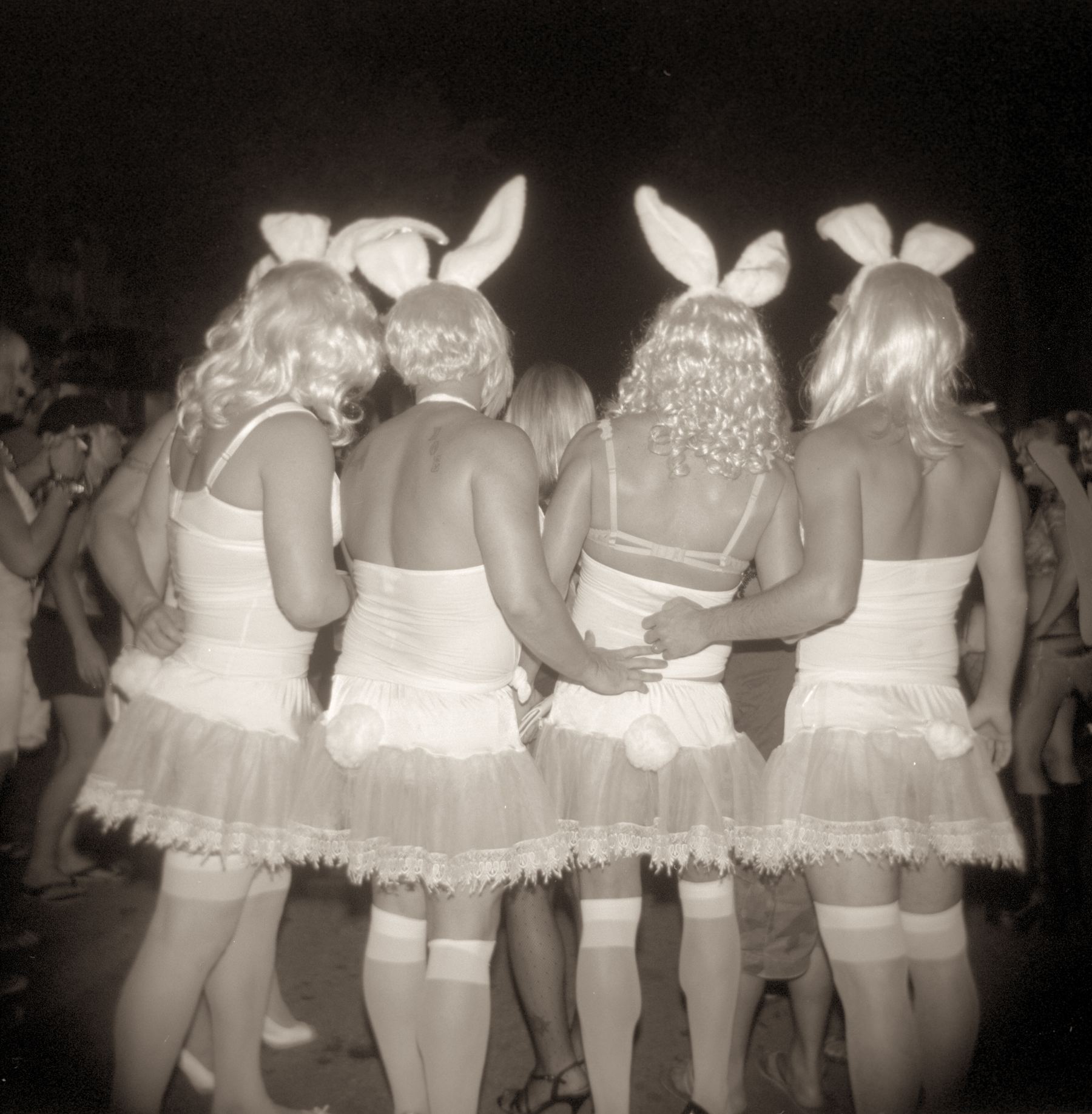 Copy of GORDON STETTINIUS, BUNNIES, KEY WEST, 2009