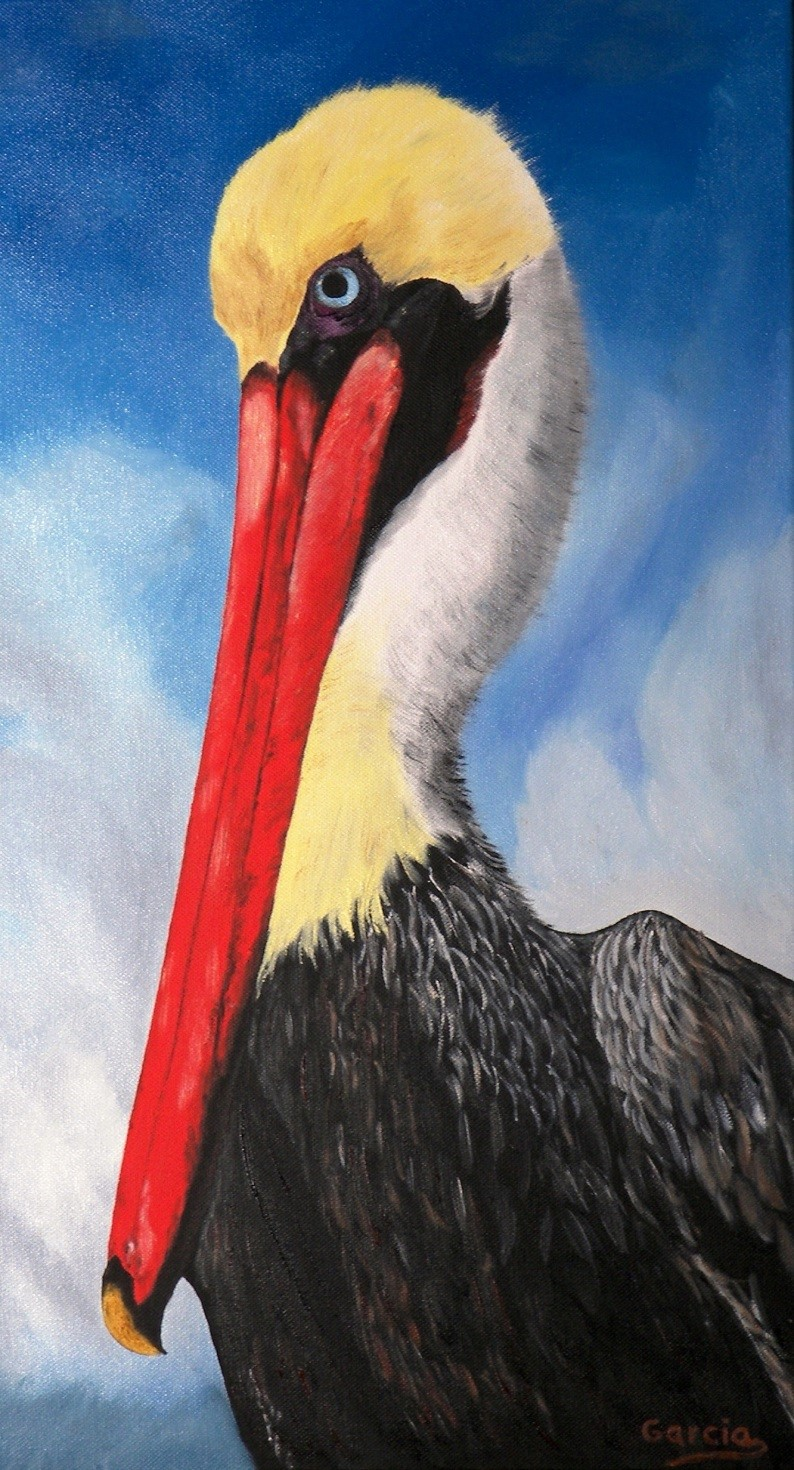 """One Good Looking Pelican 12"""" x 24"""""""