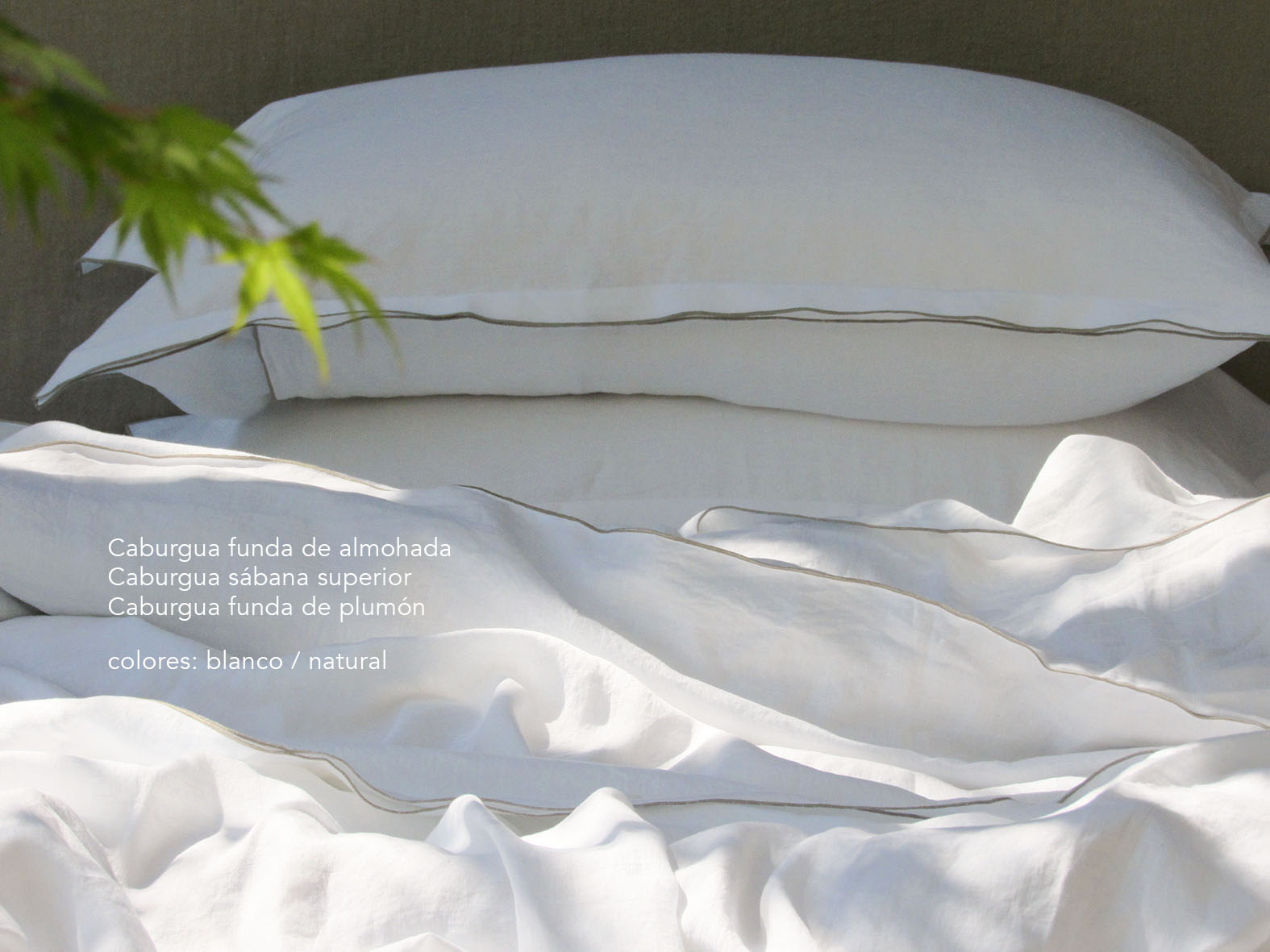 3. Colomba Living Bed description es .jpg
