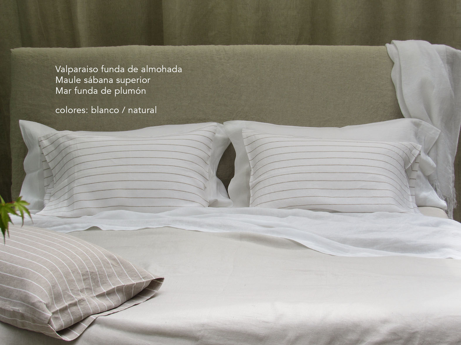 14. Colomba Living Bed description es.jpg