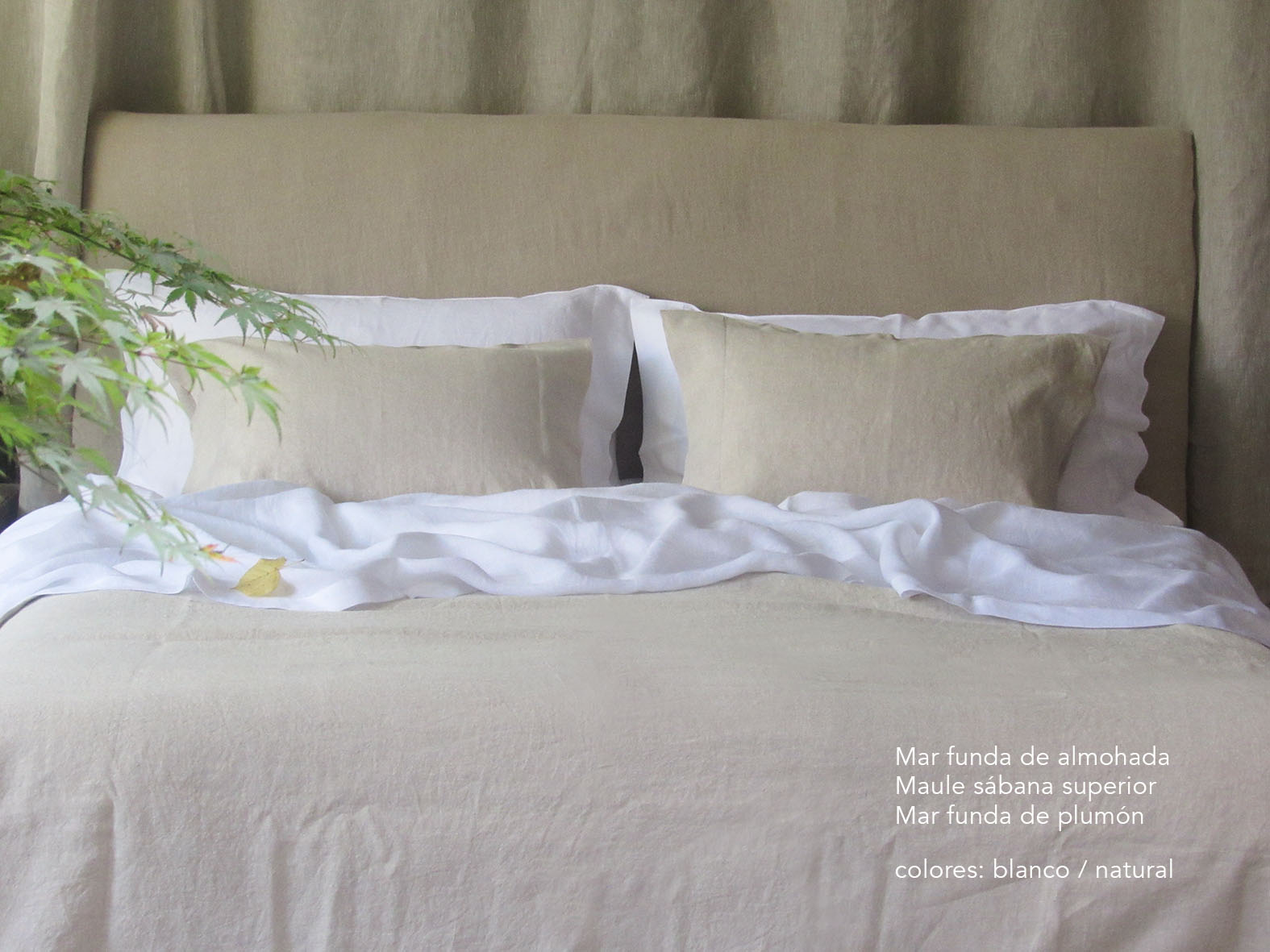 1. Colomba Living Bed  description es .jpg