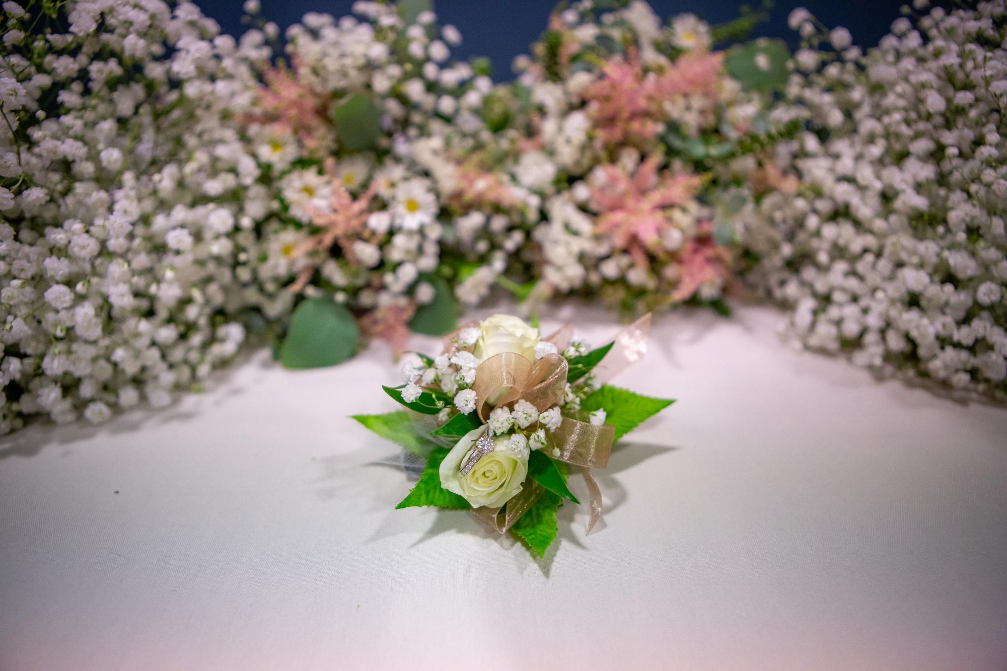 Ramada-Inn-Geneva-NY-Wedding-7718.jpg