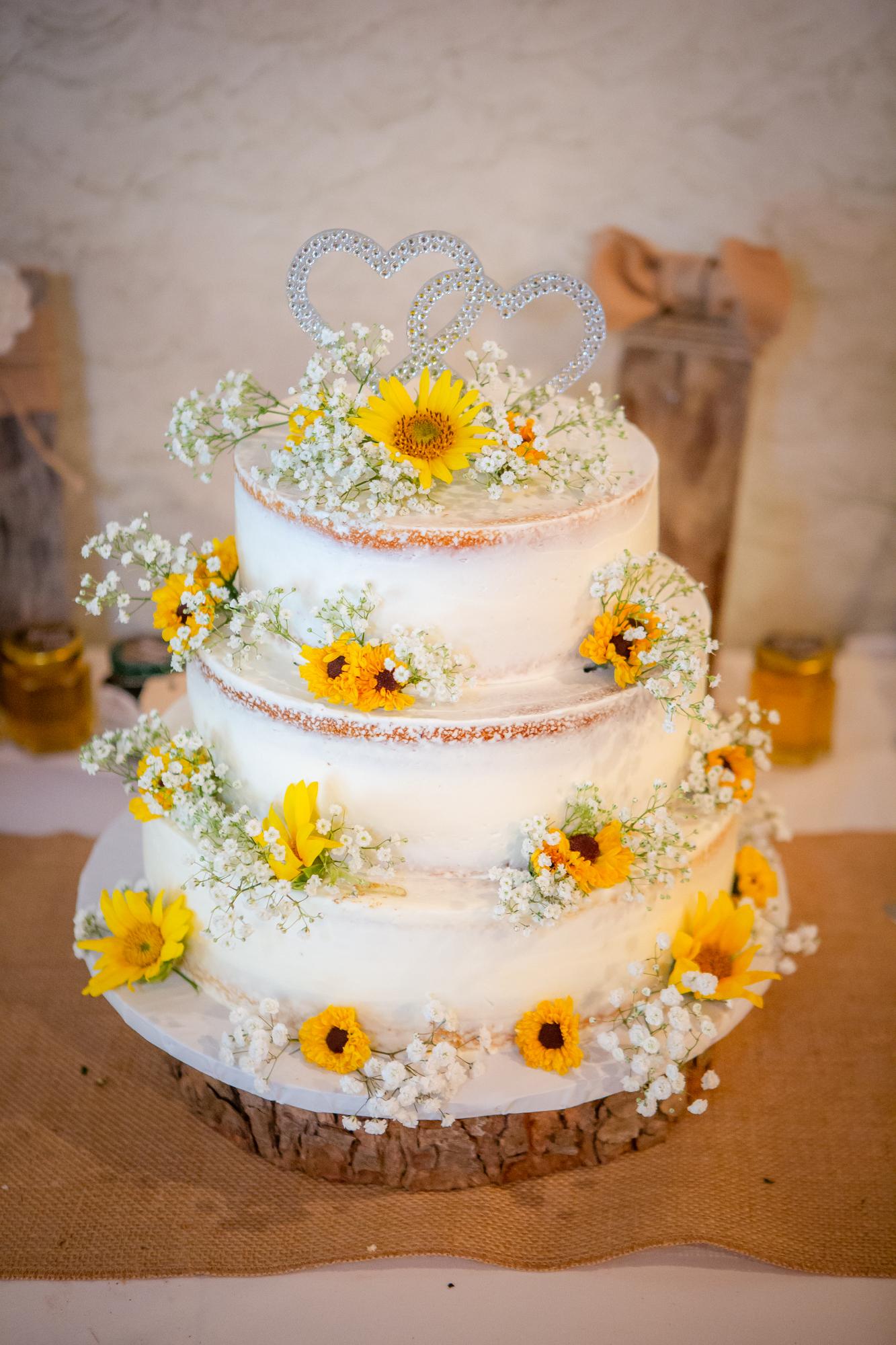 Wedding-Carriage-House-Oneonta-NY-0484.jpg