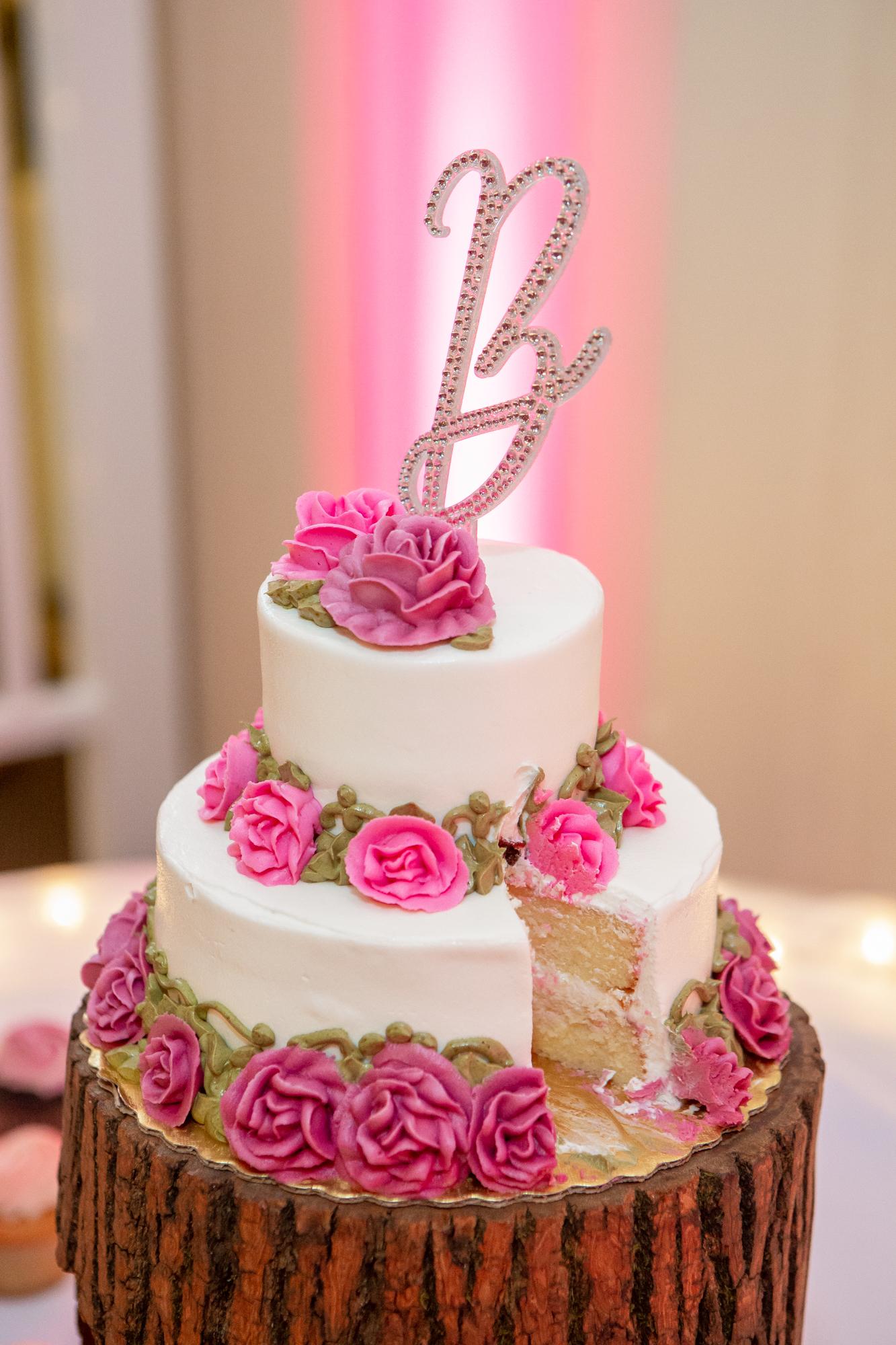 Holiday-Inn-Elmira-NY-Wedding-8275.jpg