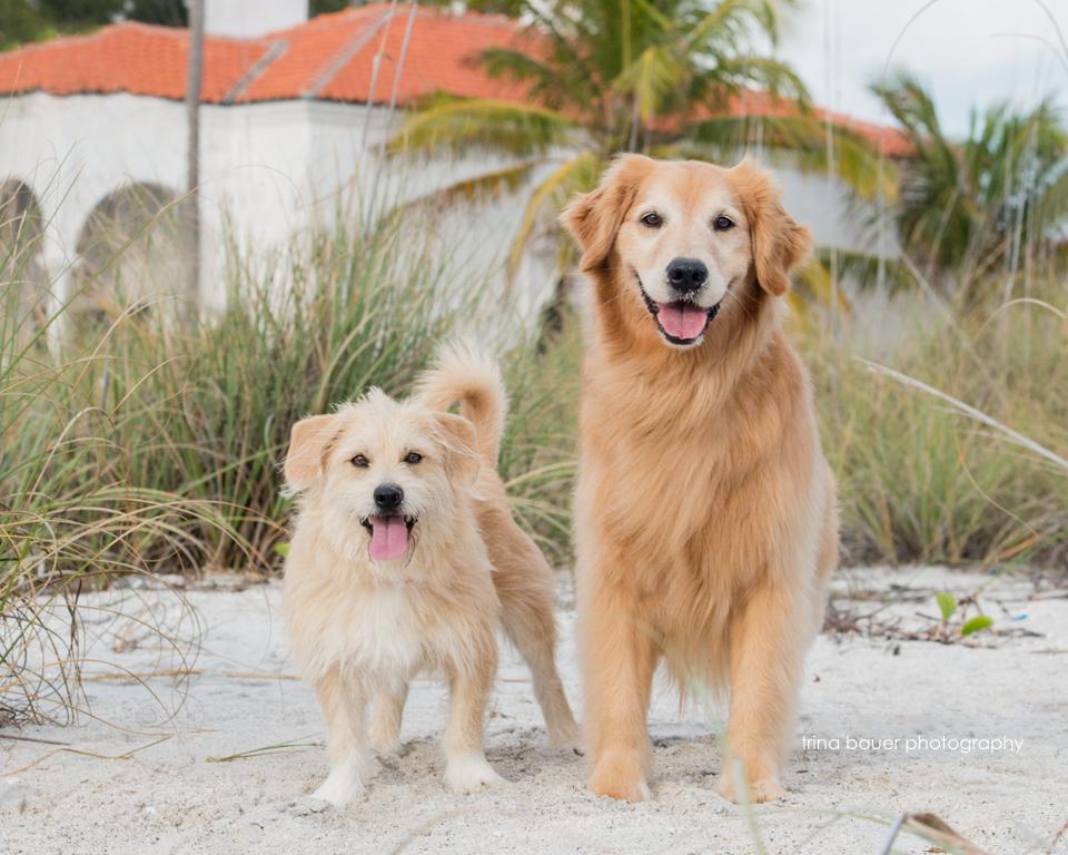 Izzy.Kita.Boca.Grande.Beach.Florida