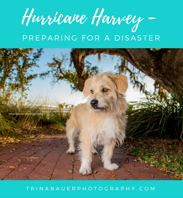 Hurricane Harvey - Preparing for a disaster