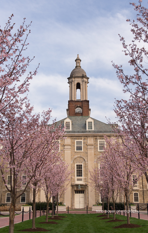 Old Main spring trees.jpg