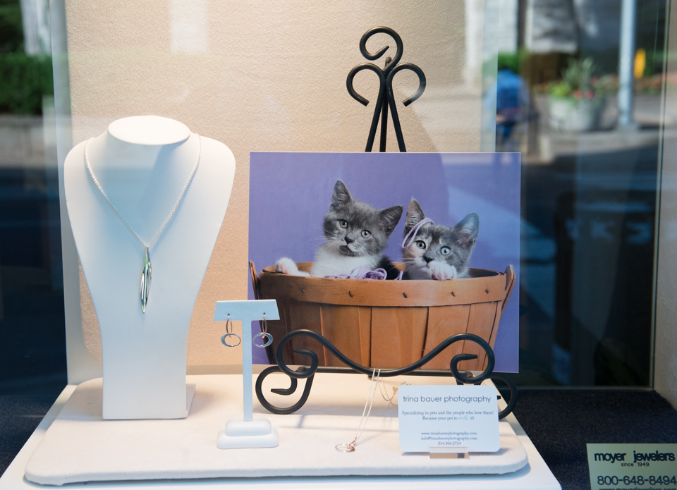 Frannie's kittens Moyer Jeweler display