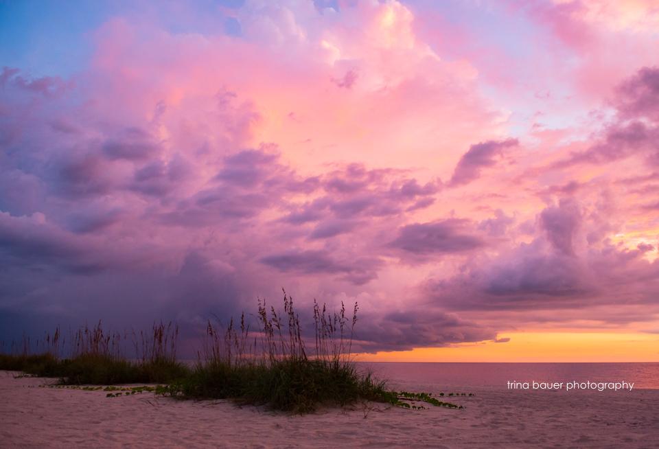 Florida summer sunset