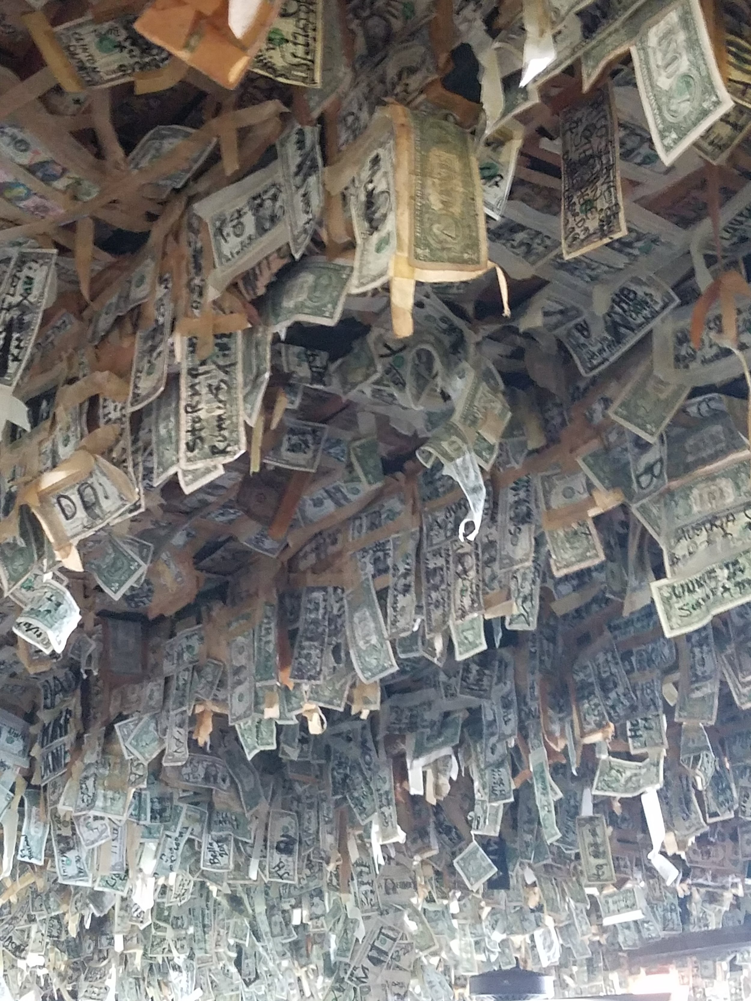 Dollar Bill Bar at Cabbage Key