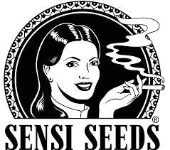 sensi seeds.png
