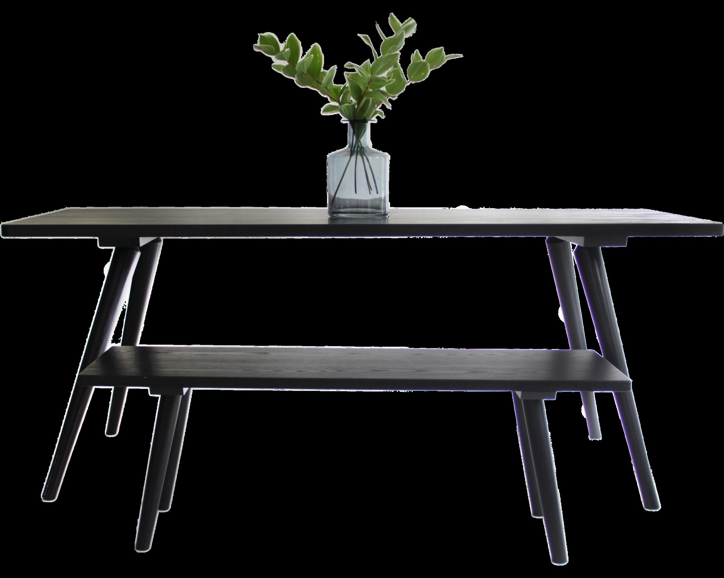 SinCa -Shaken-Table.png