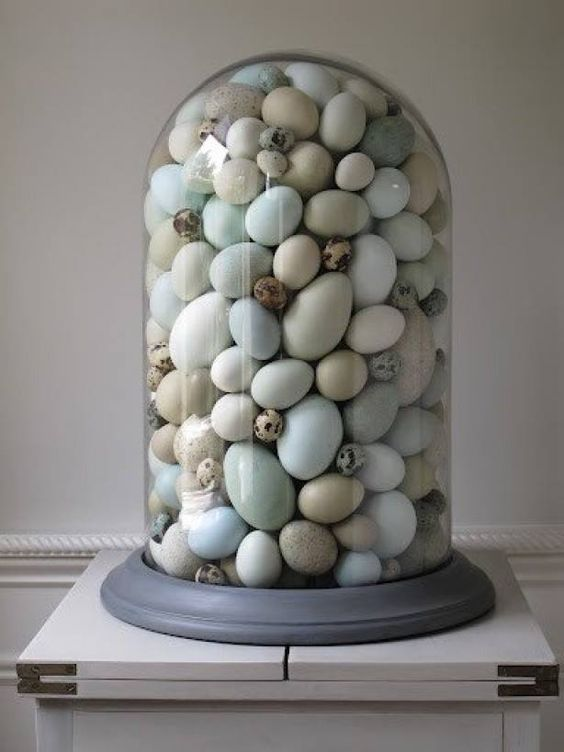 Victorian Terrariums with eggs