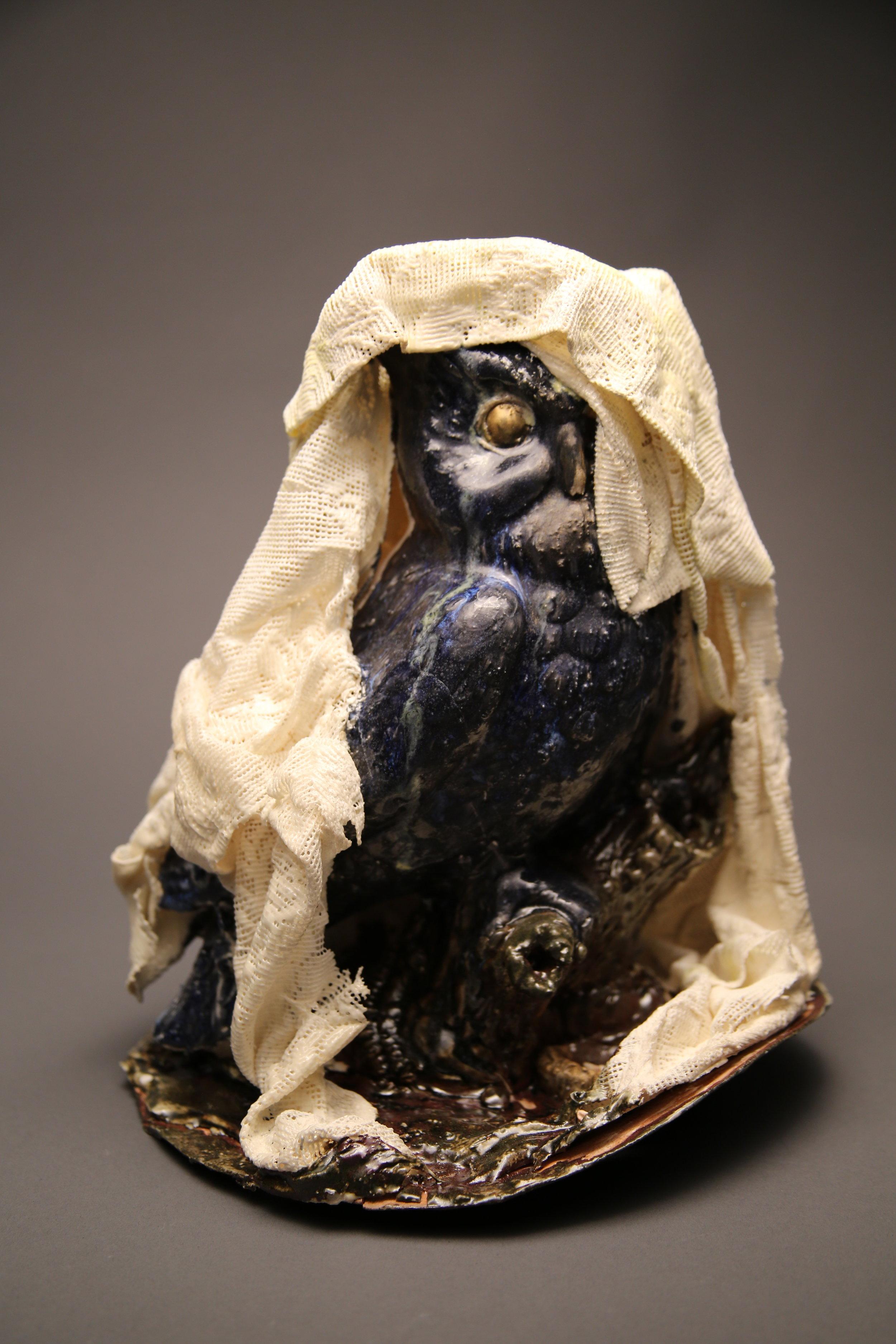 Owl in Veil