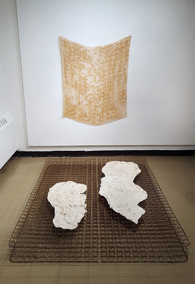Copy of Laxalt, Michelle %22Vessel%22 and %22Spring Space%22 (Installation at Arts Exchange in Atlanta) Box Spring, Fabric, Slip, Wax, Rust on Silk_Dimensions Variable_2016.jpg