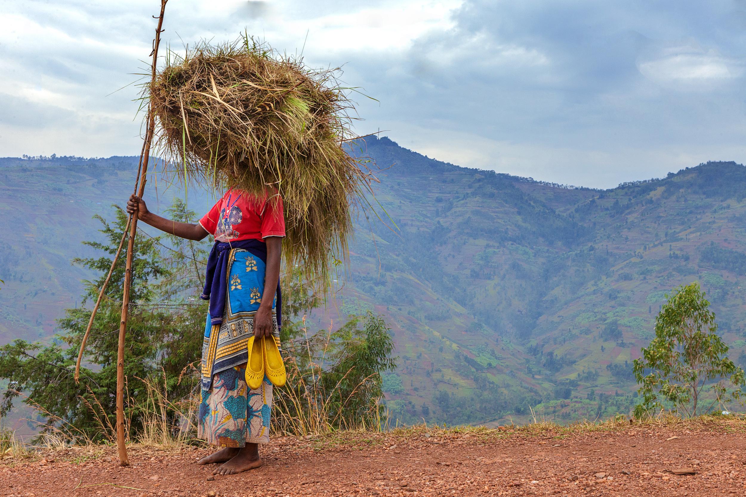 COFFE BEANS: THE RWANDAN FARMERS